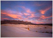 Guadalupe Mountains National Park, Texas.  ( )