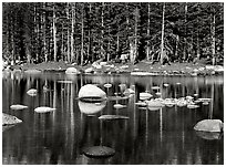 Pond, Yosemite High Country, 1981.  ( )